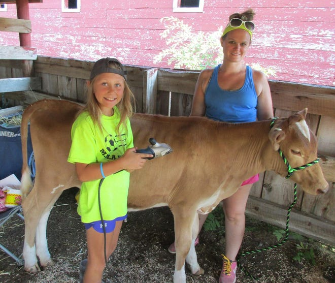 Maddy Funk, left, and Jess Powers groom Eve for showing in July 2018 at the Madison County Fair in Brookfield. The fair returns July 8-11 for four days of fun.