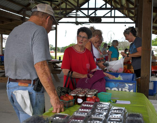 """The Market on Maple is open on Thursday afternoons in Sylvania from 3-6 p.m. as citizens like the Sheffields buy some farmers market vegetables from Jacobs Produce on July 1. This month has some cool treats scheduled during the hot days as """"Christmas in July"""" is set for July 15. A week later on July 22 the Screven County Chamber of Commerce will host a mini food truck festival at the market. Each week an array of vendors fill the market under the covered pavilion."""