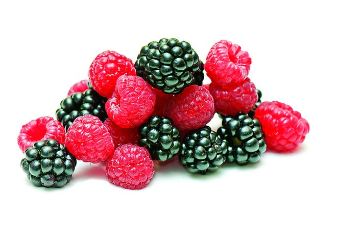 Blackberries and raspberries are among the items available for picking.