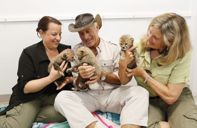 Jack Hanna and his daughter Julie, left, and wife Suzi, right, hold a trio of 3-week-old baby cheetahs inside the Columbus Zoo and Aquarium's animal programs building in 2018.