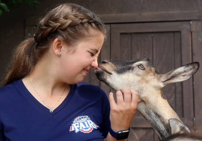 Brooke Fleshman of Galloway receives a kiss from her alpine goat, Duke, on June 30. Fleshman will show Duke and her other goat, Luke, at the Franklin County Fair.