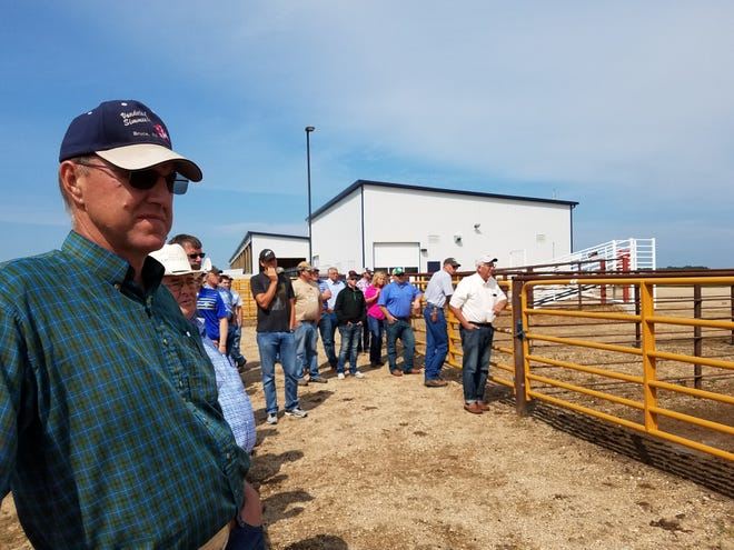 The 2021 Feedlot Shortcourse returns to campus Aug. 11 and 12 and will be held at the SDSU Cow-Calf Education and Research Facility classroom, located at 2901 Western Ave. in Brookings.