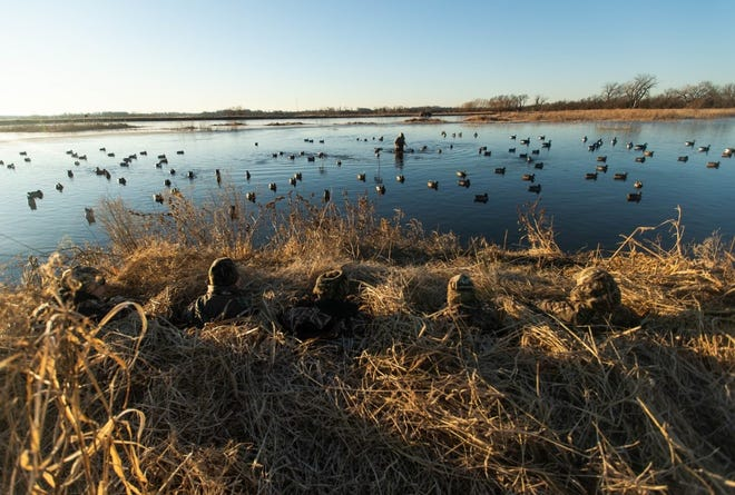 Hooray Ranch, established in 2013 in Reno County, Kansas is known for its waterfowl.