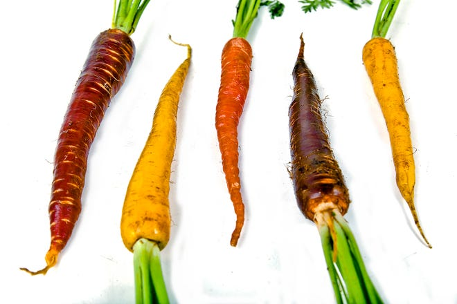 Carrots are among the vegetables that can be grown in the fall.