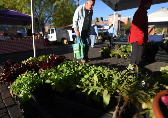 People browse the vendors during the opening day of the Riverfront Farmers Market in Wilmington, N.C., Saturday, March 23, 2019. [STARNEWS FILE PHOTO]