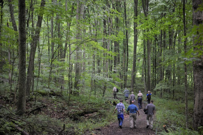Scientists affiliated with the Ohio Department of Natural Resources visited the newly-named Doris Duke Woods on Thursday morning.