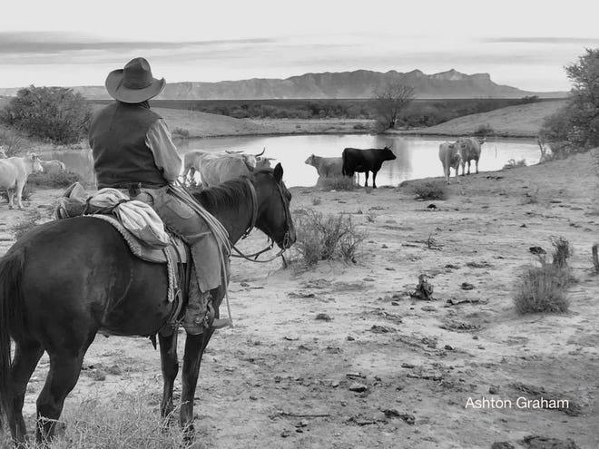 """""""Lone Cowboy"""""""