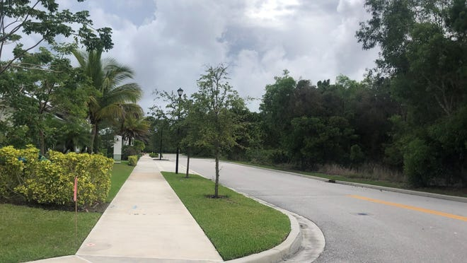 Rendina Healthcare plans to build a 42-bed specialty hospital in Jupiter's Abacoa neighborhood in this wooded area along Pioneer Road.