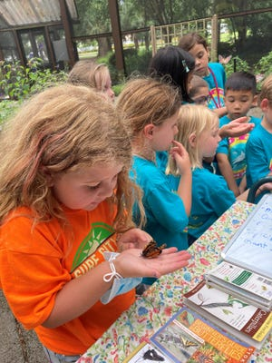 Participants in the Surf City Summer Camp learn about nature and butterflies.