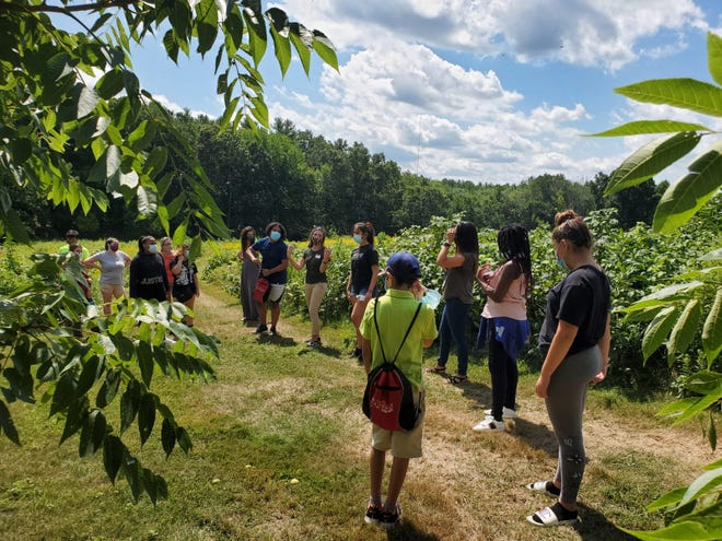 Students get hands-on with STEM education during an outdoor activity with LEI.
