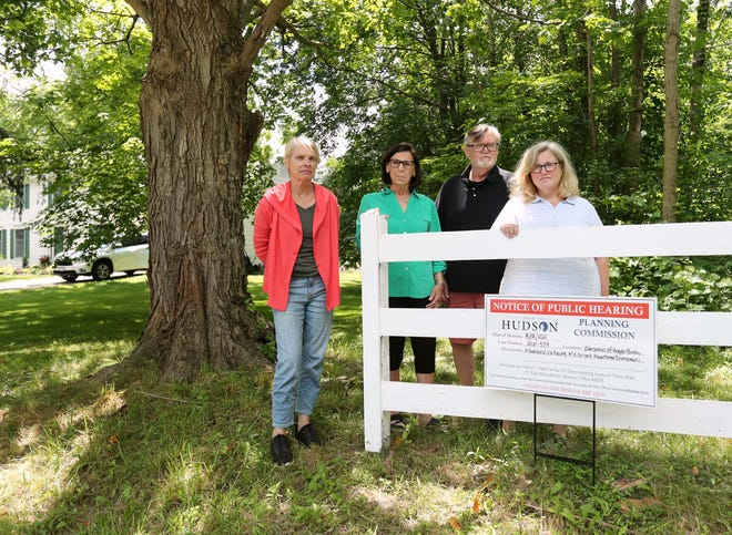 Barlow Road residents Jeannette Palsa, left, Val and Joe Czerwien and Kristen Schell stand behind a small sign on Schell's property line announcing a public meeting on July 12 for a proposed townhome development next to Schell's property.