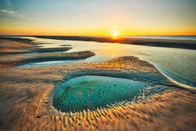 """""""Little Talbot Pool"""" by former Times-Union photographer Will Dickey, who will join fellow nature photographer Tom Schifanella for the next Boardwalk Talk at Beaches Museum on July 15."""