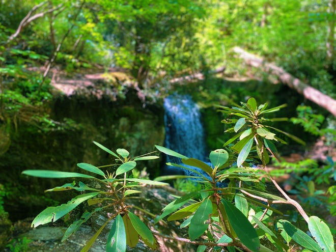 """Caldeno Falls, known locally as """"Diana's Bath,"""" is a trail that is a part of both the Delaware Water Gap National Recreation Area and Appalachian trail."""