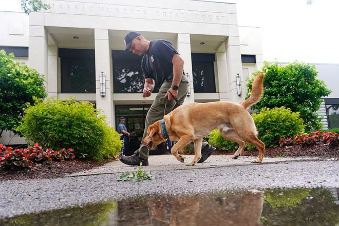A Massachusetts State Police K-9 team searches for explosives outside District Court in Malden, Mass., on July 6 before the men arrested during an armed standoff on Route 95 in Massachusetts on July 3 were to appear for arraignment.