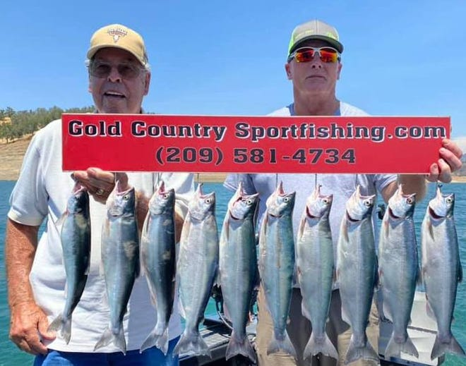 Bill Mecedo and Jay Willis landed these kokanee salmon while trolling with Monte Smith of Gold Country Sportfishing at Don Pedro Lake on July 1.