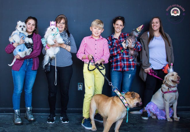 2019 Paws on Parade canine court winners.