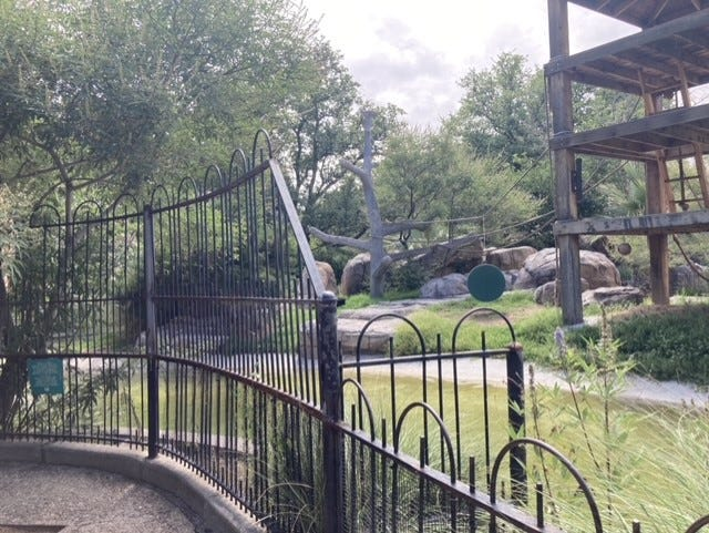 Fencing around the spider monkey exhibit is being raised to over five feet tall. Contractors began the work on Tuesday, July 6 at the El Paso Zoo.