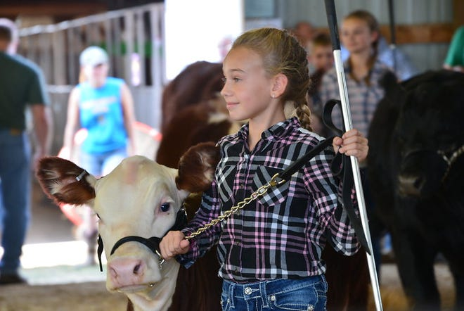 County fairs are a place where many farmers, agri-businesses, and the community come together to celebrate.
