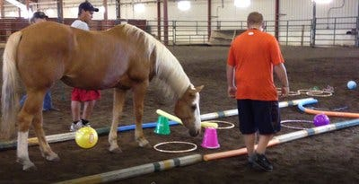 Students participate in an equine-assisted learning session at the NDSU Equine Center.