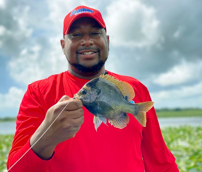 Lakeland resident Loel Johnson, of Dr. Crappie Outdoors, caught this nice size bluegill while fishing at Lake Kissimmee last week.
