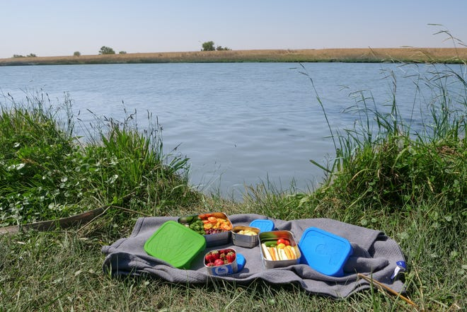 Sandra Ann Harris founded ECOlunchbox, a mission-based, plastic-free lunchbox company.