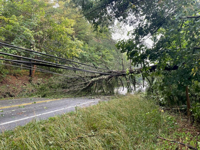 A fallen tree along Route 209 caught power lines on its way down. Numerous areas throughout the Poconos reported losing power Tuesday night and into Wednesday morning.