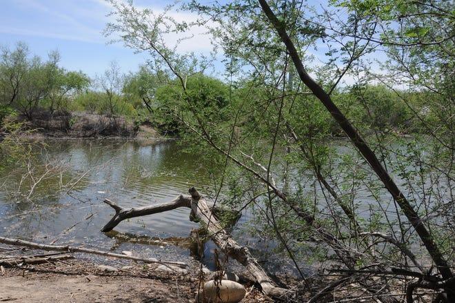 A restored section of the Salt River flows through the Rio Salado Habitat Restoration Area in Phoenix.