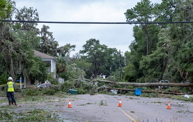 Officials assess damage caused by Tropical Storm Elsa in Port Royal on Thursday.