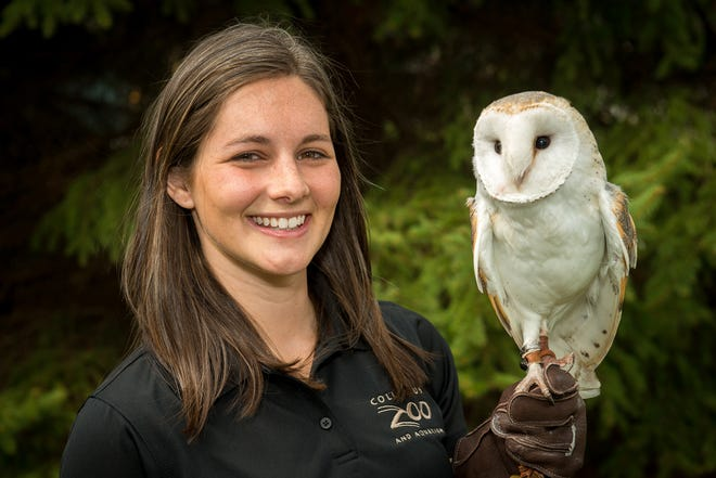 Heather Price, animal-programs specialist with the Columbus Zoo and Aquarium, is shown holding a barn owl. The Olentangy Education Foundation will hold its second ZOOlentangy fundraiser at the zoo Aug. 13, and patrons will be able to get an up-close look at some of the animals.