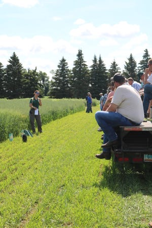 Producers and others learn about organic and sustainable agriculture during a field tour at NDSU's Carrington Research Extension Center.