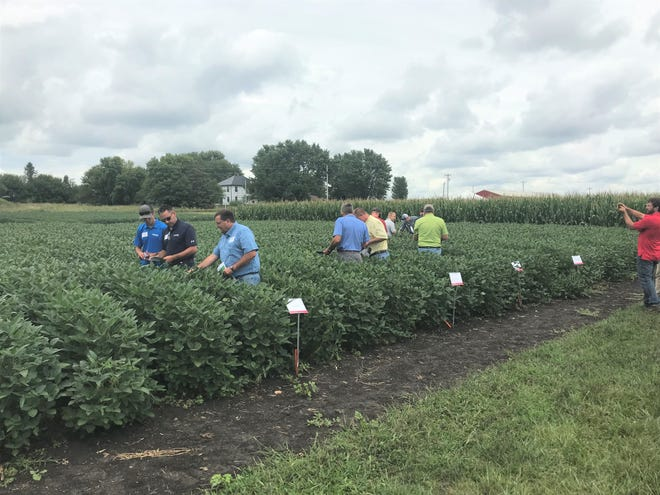 Each year, specialists with ISU Extension and Outreach present at a crop management clinic on crop and pest management, soil fertility and nutrient management.