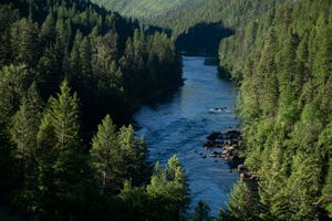 The South Fork Flathead River flows downstream of Hungry Horse Dam toward Hungry Horse, Mont. on June 17, 2021.
