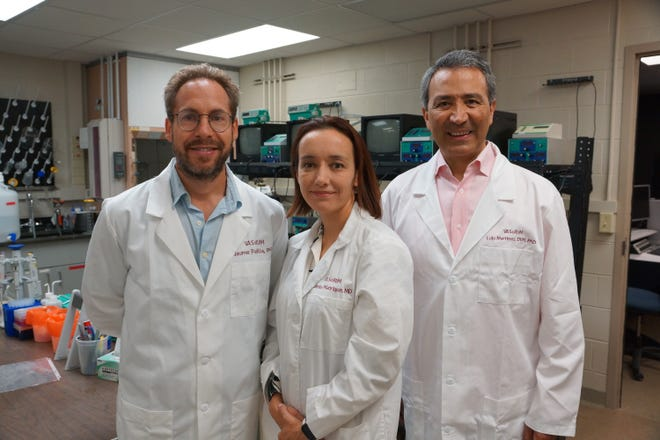 Manrique-Acevedo, Martinez-Lemus and Jaume Padilla are among the first wave of researchers who will move into the NextGen Precision Health building, which is scheduled to open in October.