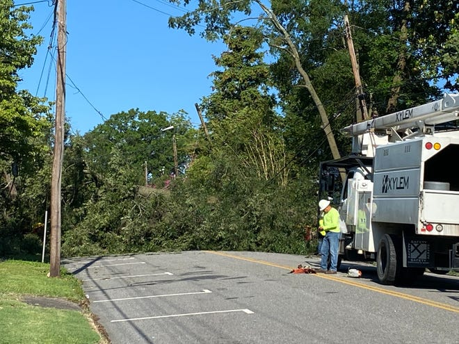 Crews from the tree-removal service Xylem get ready to go to work on a large tree across Franklin Street in downtown Petersburg Friday, July 9, 2021. The tree fell Thursday night due to Tropical Storm Elsa.