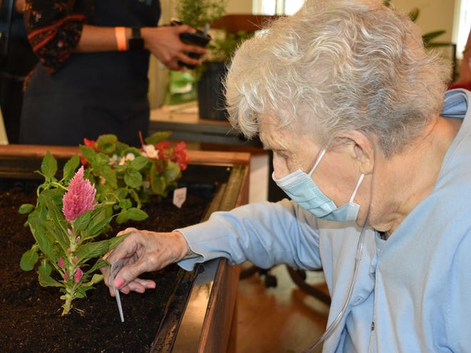 The Eldergrow program gives Sunnyside Village seniors a therapeutic connection to nature through classes on horticulture, the culinary arts, and garden art.