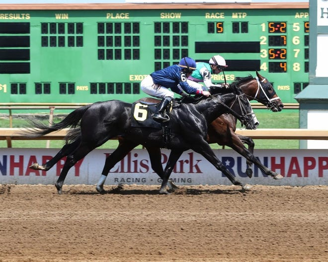 Privet Moon (No. 2 on the rail), with Florent Geroux as the jockey, edged Flags Up while setting a track-record 1:20.69 for seven furlongs Friday at Ellis Park.
