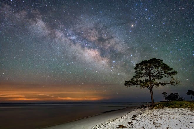 Lonely Pine Tree Milky Way At Mashes Sands 2021