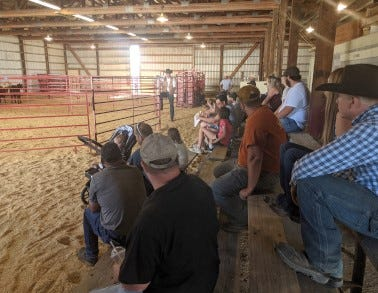 The UW-Madison's Division of Extension and the Wisconsin Beef Council will be hosting a set schedule of in-person Beef Quality Assurance (BQA) certification meetings over the coming months.