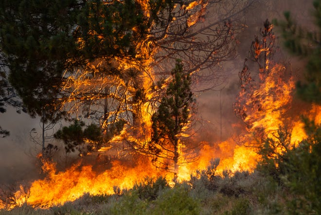 The Beckwourth Complex fire was ignited by lightning on June 30.