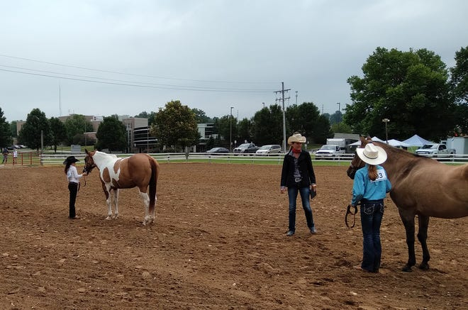 Participants in Saturday's Western Horse and Pony Show get judged at the Morgan County Fairgrounds.