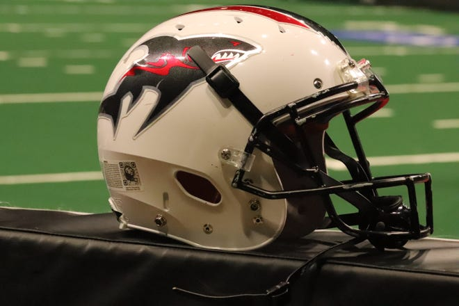 The Jacksonville Sharks are in action Saturday night at VyStar Veterans Memorial Arena.