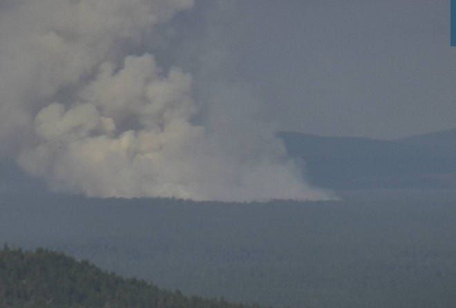 The Bradley Fire is 40 to 50 acres and burning in the McCloud area on Sunday, July 11, 2021.
