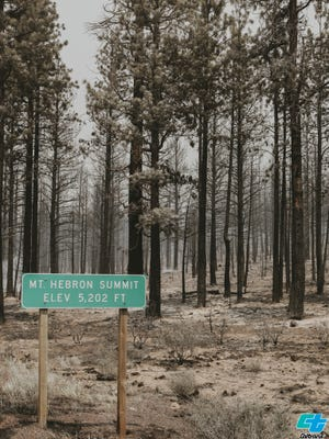 Caltrans District 2 shared this photo of wildfire damage at Mt. Hebron Summit on Highway 97. The photo was taken before Highway 97 was reopened.