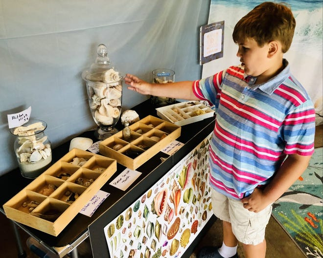 Evan Schmidt, 10, of Pickerington, takes a visitor on a tour Tuesday of his shell museum, which he has set up in his garage. He has collected shells from around the world.