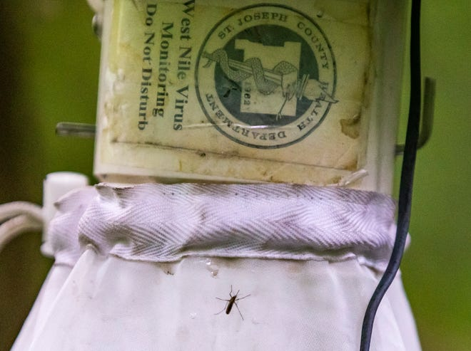 The St. Joseph County Department of Health uses traps to check for mosquitoes carrying diseases such as West Nile Virus and EEE.