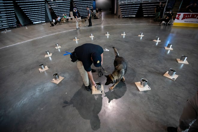 A handler and his dog practice identifying scents during the National Odor Recognition Testing event hosted by the Bureau of Alcohol, Tobacco, Firearms and Explosvies at Nationwide Arena Wednesday.