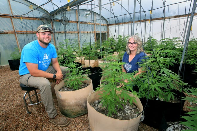 Nate Hiatt and his mother Sara Hiatt are part of their family business High Point Pharms. They show hemp plants growing in a greenhouse near their home.
