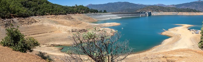 Panoramic view of Shasta Lake on July 8 during a severe drought. (CDFW Photo/Travis VanZant)