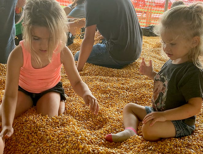 Callie and Carlynn Tracey of Hudson, Ind., spent time in the corn box Wednesday at the LaGrange County 4-H Fair.