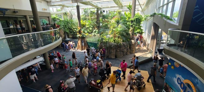 """Somerset County residents enjoyed the 13th Annual Pittsburgh Zoo Safari Wednesday. The Pittsburgh Zoo & PPG Aquarium opens its doors once a year as a """"thank you"""" to county residents for hosting the Pittsburgh Zoo & PPG Aquarium's International Conservation Center for elephants in Fairhope."""